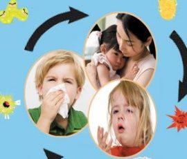 Bệnh viêm đường hô hấp - món ăn nào giúp hỗ trợ và điều trị