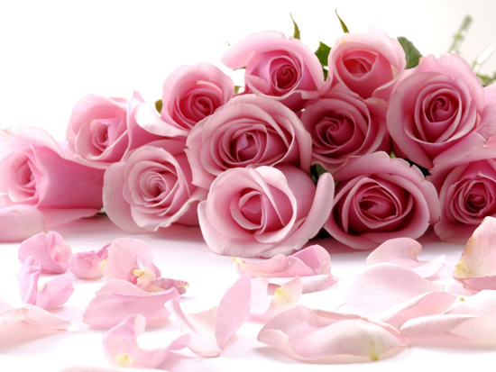 Món ăn từ hoa rất có lợi cho sức khoẻ