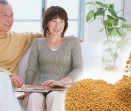Công dụng của hạt methi với sức khỏe