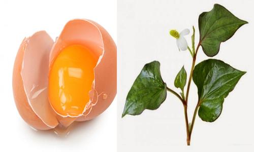 Trứng gà và rau diếp cá