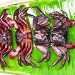 Ba khía Rạch Gốc – Món ngon dân dã nơi đất mũi Cà Mau