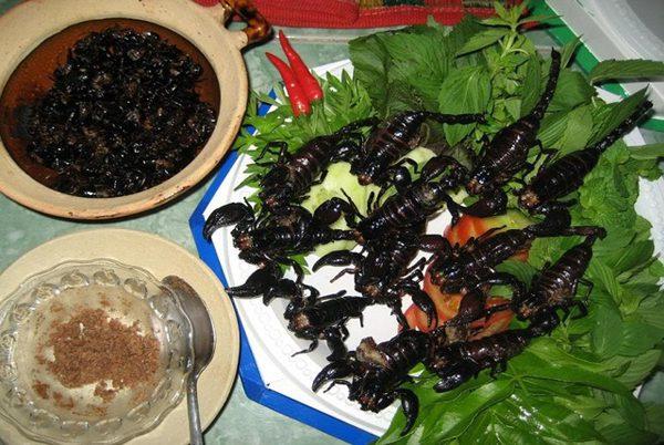 Bò cạp Bảy Núi món ăn ngon độc đáo của An Giang