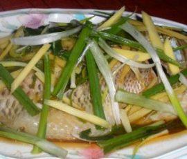 Món cá hấp gừng hành ngon đúng điệu