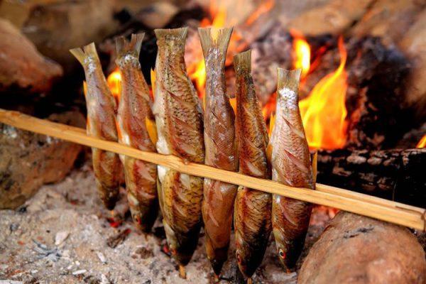 Cá nướng sông Đà