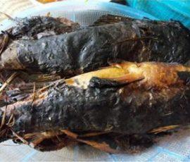 Cá nướng rơm Ninh Bình độc đáo và hấp dẫn