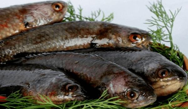 Món cá rô Tổng Trường