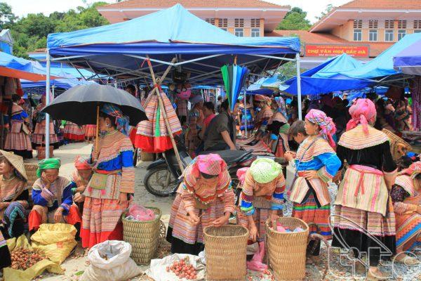 Phiên chợ Bắc Hà Lào Cai