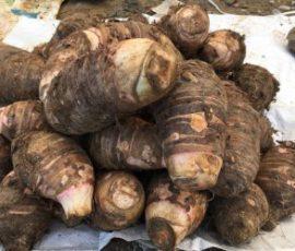 Khoai sọ mán món đặc sản của Mộc Châu Sơn La