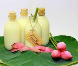Món sữa hạt sen bổ dưỡng mà đơn giản ngay tại nhà