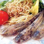 Cá ngát Ngã Bảy – Đặc sản Hậu Giang