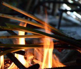 Đọt mây nướng than hoa - món ăn ngon Bình Phước.