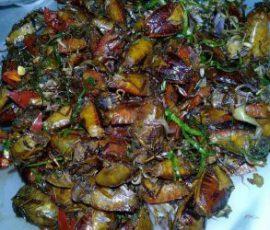 Bọ xít rang Sơn La thách thức tín đồ ẩm thực