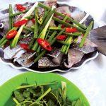 Cá tà ma – món ngon chỉ có ở đảo Lý Sơn