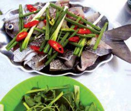 Cá tà ma - món ngon chỉ có ở đảo Lý Sơn