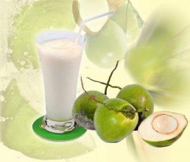 Món sinh tố dừa mát lạnh tốt cho sức khỏe
