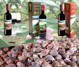 Rượu sim Phú Quốc -Say lòng du khách