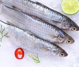 Cá đối Cần Giờ - Món cá ngon bạn không nên bỏ qua