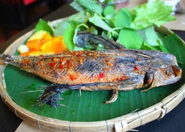 Cá ngát