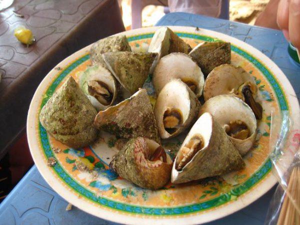 Món ăn từ ốc vú nàng ngon của Hội An Quảng Nam