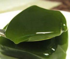 Món thạch găng mát lịm giải nhiệt ngày nắng nóng