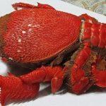 Cua Huỳnh đế Quy Nhơn món hải sản bạn nên thử một lần