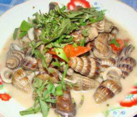 Món ốc len hầm dừa Bạc Liêu mang hương vị riêng
