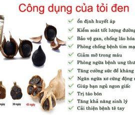 Công dụng của tỏi đen với sức khỏe bạn nên biết