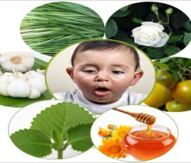 Cách trị ho cho trẻ bằng các bài thuốc dân gian