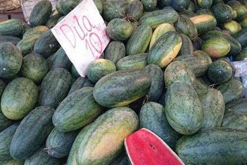 Dựa vào trọng lượng quả dưa để chọn dưa