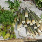 Món rau rừng vùng Tây Bắc ngon trứ danh