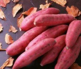 Điều cấm kỵ khi ăn khoai lang bạn nên biết