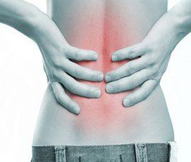 Món ăn cho người đau lưng nhức mỏi