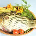 Lưu ý khi ăn cá chép không tốt cho một số bệnh