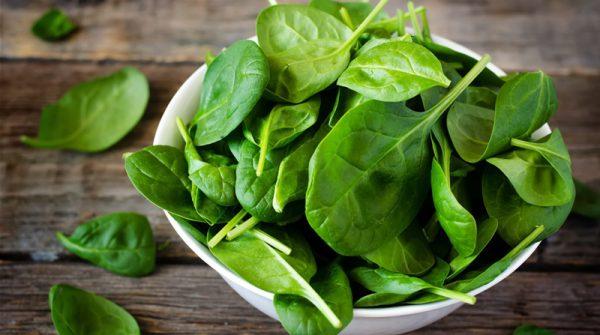 Người bị loãng xương không nên ăn rau bina