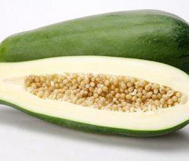 Món ăn từ đu đủ xanh giúp chữa bệnh tuyệt vời
