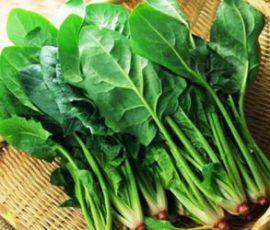 Món ăn từ cải bó xôi bổ dưỡng bạn nên biết