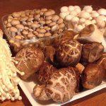 Cách bảo quản nấm đơn giản tại nhà