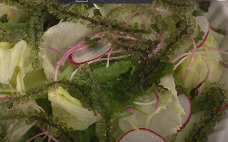 Xếp salad lên đĩa